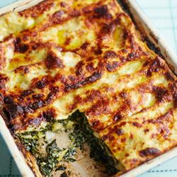 Spinazie lasagna met tomaat